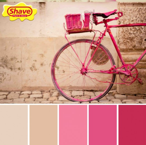 colour inspiration 65