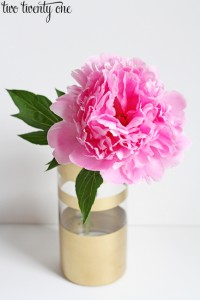 pink-peony-in-gold-vase