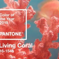 Pantone Colour of the Year 2019 – Living Coral