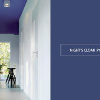 Plascon Paint Trends 2019